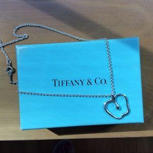 Tiffany & Co. Elsa Peretti Apple Necklace